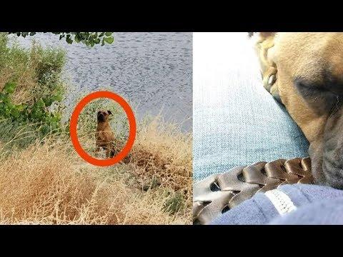 낚시하러 간 커플은 이 동물을 보았다. 동물�