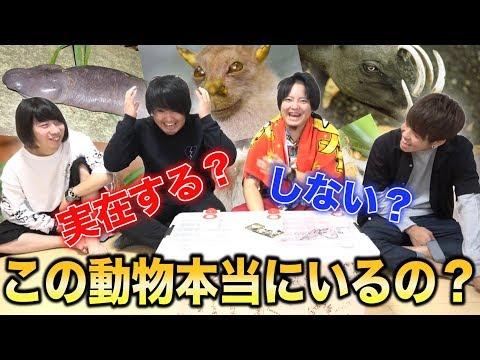 【罰は一人動物園】キモいのからカッコいいのまで!珍生物クイズ!!
