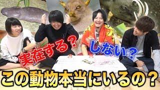 【罰は一人動物園】キモいのからカッコいいのまで!珍生物クイズ!! thumbnail