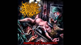 Internal Devour- Aborted and Slaughtered [Full Album 2014]