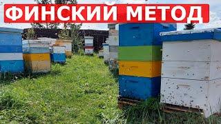 ВАРВАРСКИЙ МЕТОД ЗАМЕНЫ МАТКИ/пчеловодство 2020