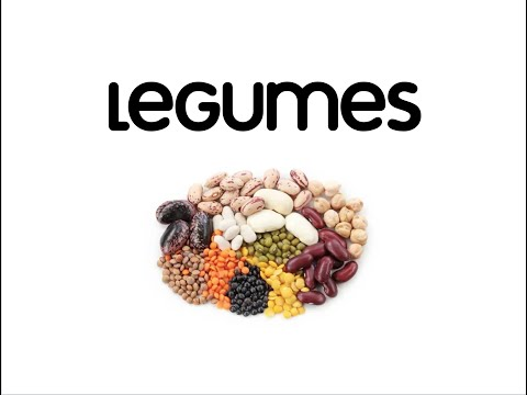 What are Legumes?