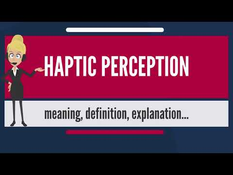 What is HAPTIC PERCEPTION? What does HAPTIC PERCEPTION mean? HAPTIC PERCEPTION meaning & explanation