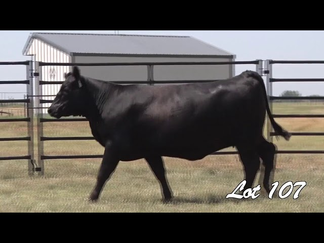 Pollard Farms Lot 107
