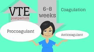 Topic 13: Postpartum Care