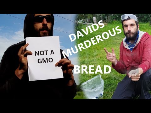 Davids Murderous Bread Infomercial Brought To You By The Not A GMO Project