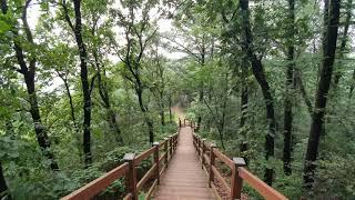 자연의소리 힐링사운드 숲속 휴식명상 백색소음 집중