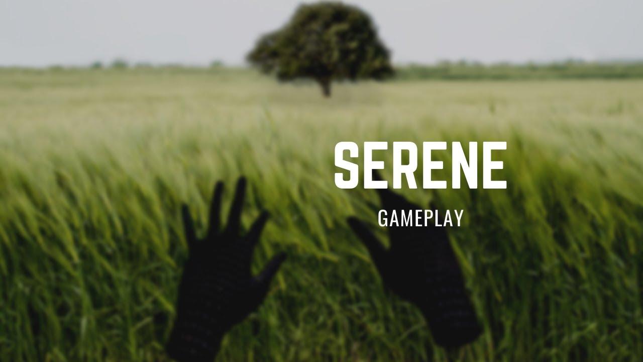 Serene Gameplay