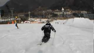 2007 Carving Ski Vs. Mogul Ski Comparasion - Chang Keun KIM