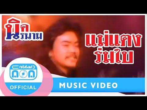 แม่แตงร่มใบ - นิรนาม [Official Music Video]