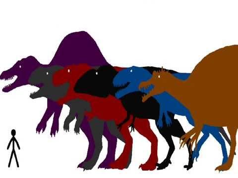 accurate theropod dinosaur size comparison 2