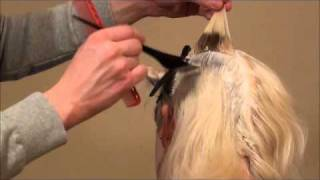 How to Platinum Blonde Hair the proper way!