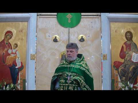 Слово перед причастием отца Григория Григорьева 16 июня 2019 г. в День Святой Троицы
