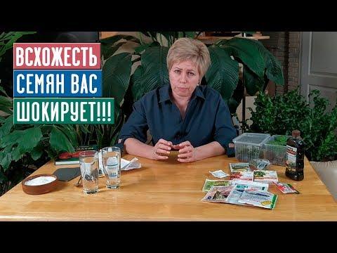 СЕЗОН 2020: ДОБИВАЕМСЯ МАКСИМАЛЬНОЙ ВСХОЖЕСТИ СЕМЯН Инструкция / Садовый гид