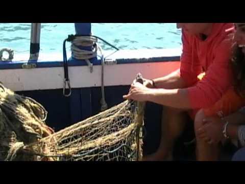 Pescaturismo Parco della Maremma Talamone