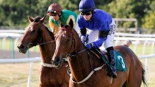 """""""The Fastest  Horse in the World""""        Racing Post  3/06/2012      stone of folca.VOB"""