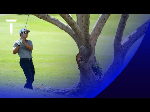 Garrick Higgo loses golf ball in palm tree | Round 2 Highlights | 2021 Tenerife Open