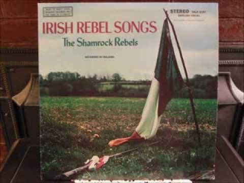 The Kerry Recruit - The Shamrock Rebels