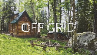 Musician Builds Off Grid Log Cabin In Canada