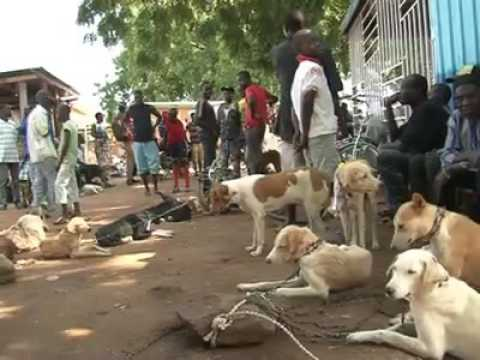 Dog meat sales in Ghana