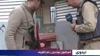 الناصرية تصاهر الموصل قصة حب جمعت مقاتلا بفتاة وسط المعارك