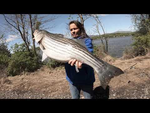 Weekend Striper Fishing On The Hudson River