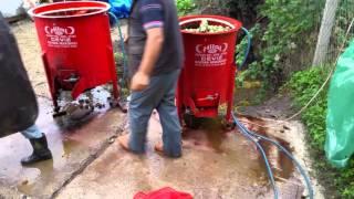Hilal Ceviz Soyma Makinası 2017 Video