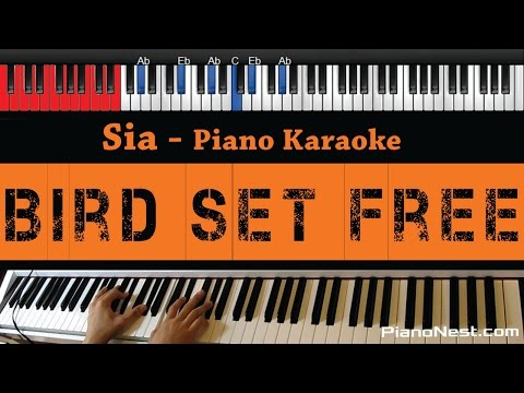 Sia - Bird Set Free - HIGHER Key (Piano Karaoke / Sing Along)