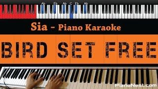 Sia - Bird Set Free - HIGHER Key (Piano Karaoke / Sing Along) Mp3