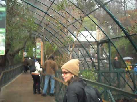 23 - Zoo de Santiago (19.07.2015)