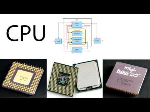 CPU(central processing unit)