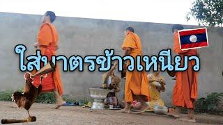 ใส่บาตรตอนเช้าทีบ้าน นึ่งข้าวเหนียวฮ้อนๆ แบบลาว laos