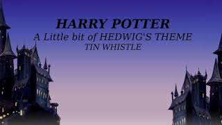 Harry Potter Whistle