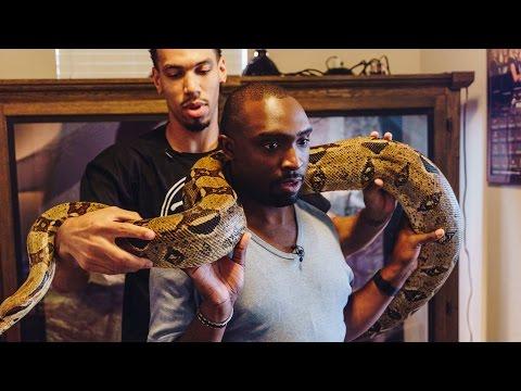 San Antonio Spurs' Danny Green Invites Us Inside His Snake Enclosure