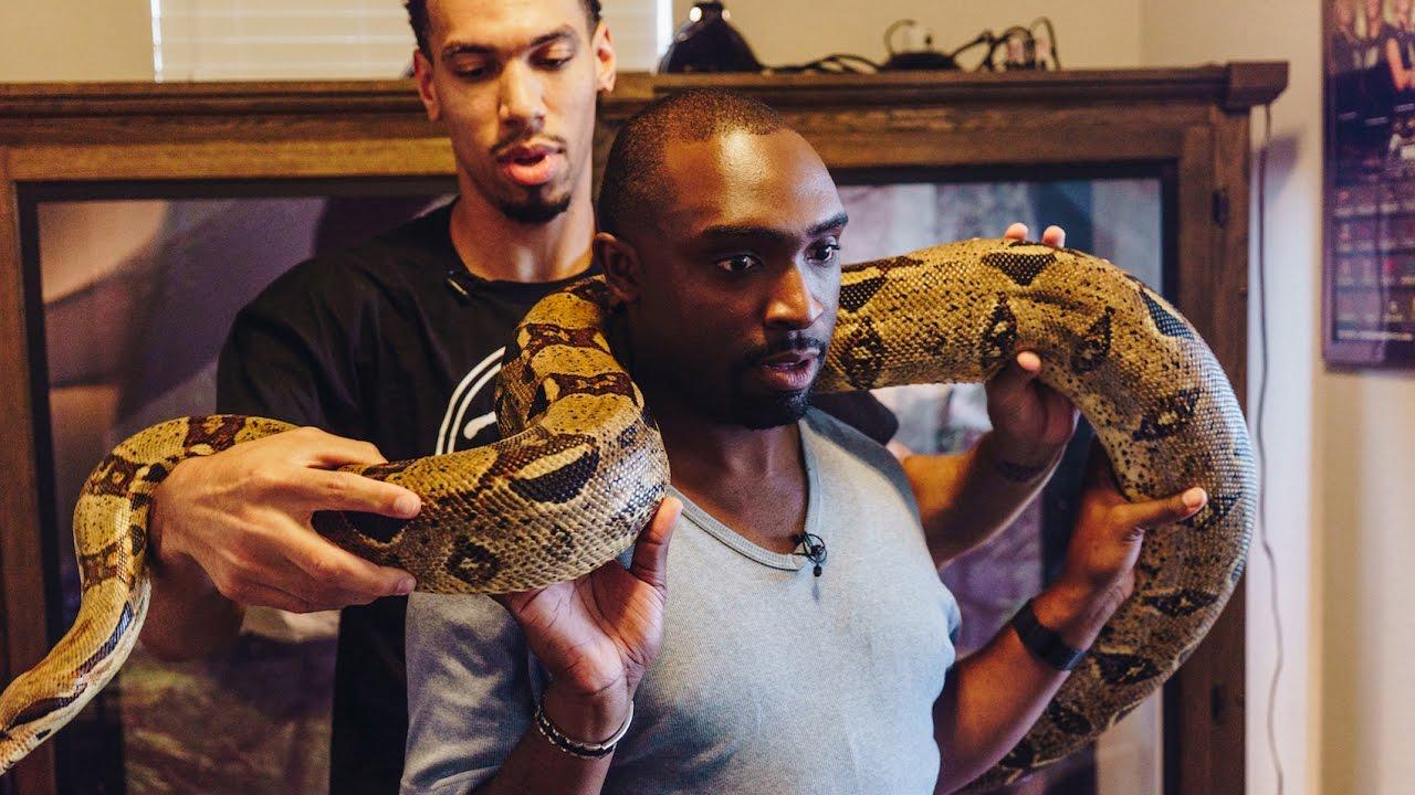 NBA Player Danny Green Invites Us Inside His Snake ...
