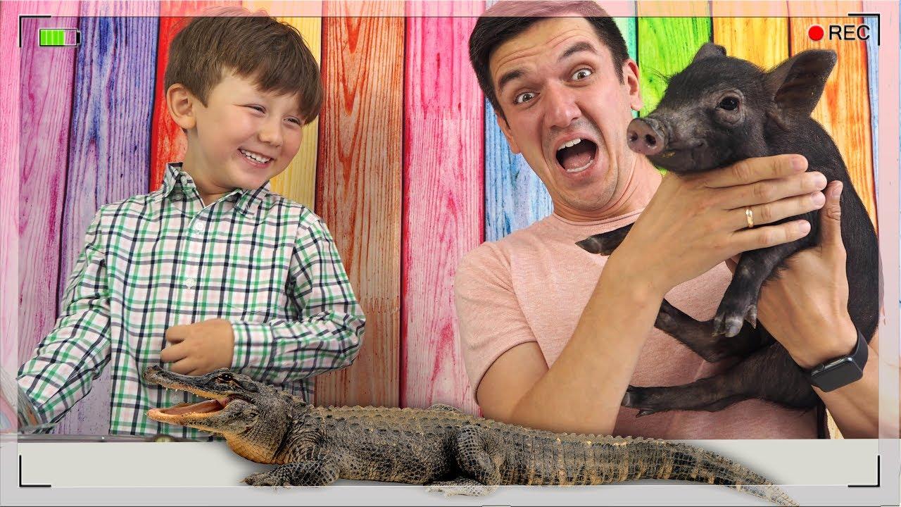 ЧЕЛЛЕНДЖ Собачьи Игрушки против Настоящих ЖИВОТНЫХ New Challenge Dog Toys vs Real Animals
