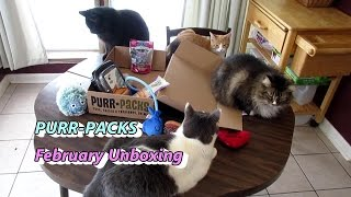 Purr-Packs Unboxing - February Cat Subscription Box Review thumbnail