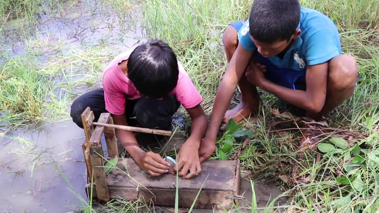 New fishing trap chan amazing smart boys using woods to for How to make a fish trap for big fish