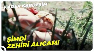 Kader Arkadaşı - Göl Kıyısında Yusuf'a Sahip Oldu! | Cüneyt Arkın Eski Türk Film