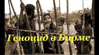 Мурад Мусаев о трагедии народа рохинья