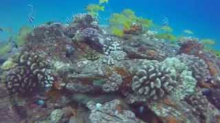 Black Rock, Maui 2015 - Cliff Jumping, snorkeling, and scuba diving at Kaanapali Beach (GoPro)