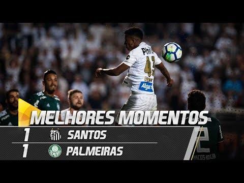 Santos 1 x 1 Palmeiras | MELHORES MOMENTOS | Brasileirão (19/07/18)