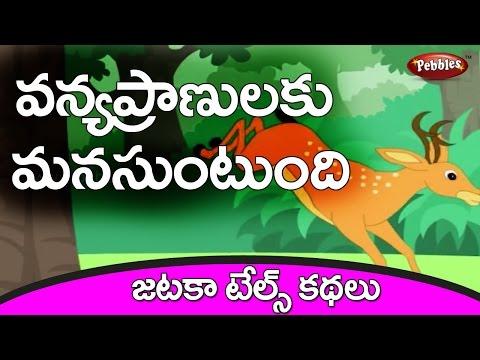 Maharaju | Bangaru Jinka | Panchatantra Kathalu in Telugu King & Noble Deer | Panchatantra Stories