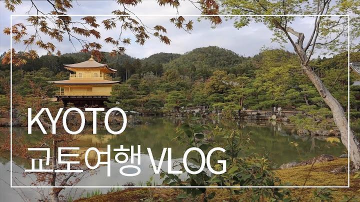 2021년 일본일상브이로그 | 교토 여행 | 금각사 | 교토역 | 에비스 맥주바에서 맥주한잔 마신 일본회사원 일상브이로그 | Kyoto, Japan | 京都一人旅