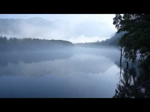 Ivan Moravec - Chopin - Etude in A-flat major, Op 25, No 1