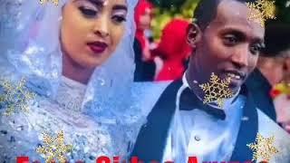 Fesse Sirbaa Cidhaa (Aruzaa) Best Wedding Oromo Music