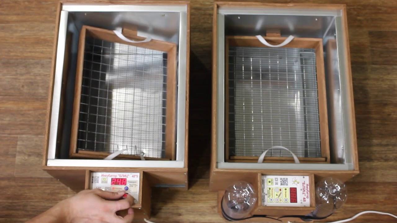 инкубатор блиц 48 цифровой видео