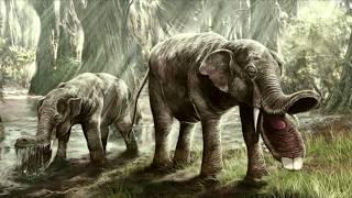 Древние животные.