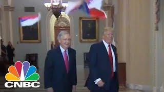 Protester Throws Russian Flags At President Donald Trump On Capitol Hill | CNBC