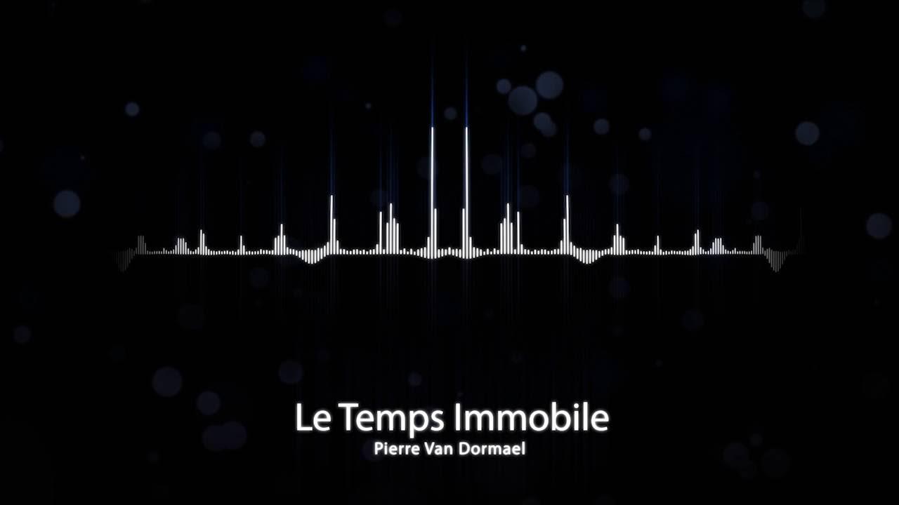 Pierre Van Dormael - Le temps immobile (Mr Nobody soundtrack) (piano version)